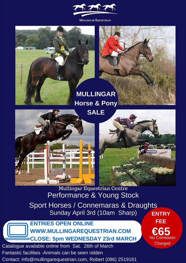 Mullingar Horse & Pony Sale 3 April 2016