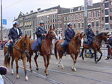 Netherlands Mounted Police