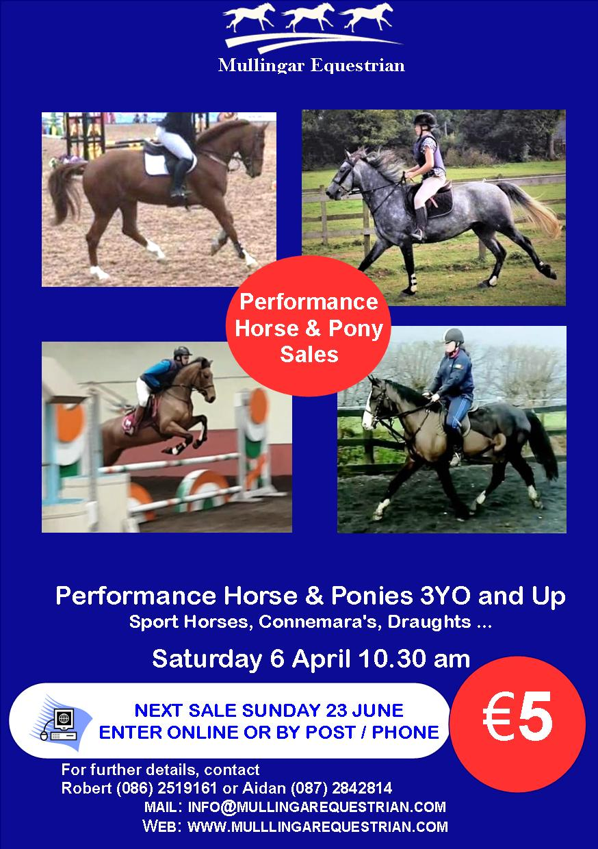 Horse and Pony Sales