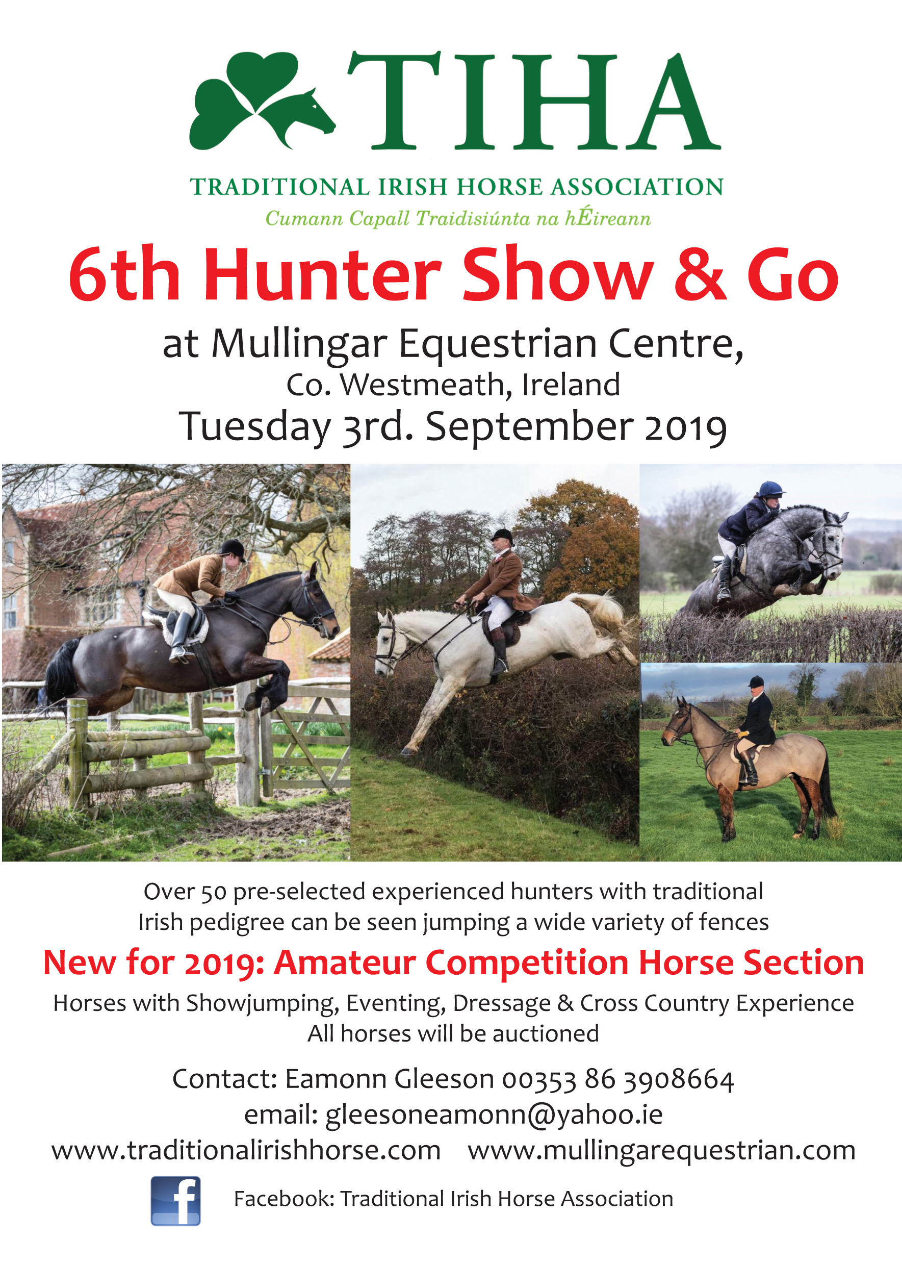 Traditional Irish Horse Association 6th Hunter 'Show & Go'