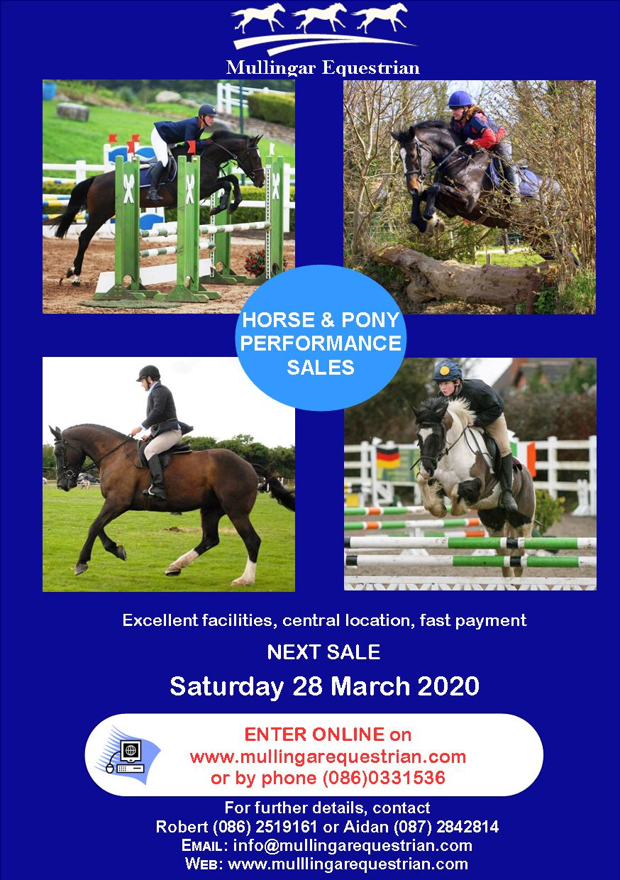 Performance Horse & Pony Sale