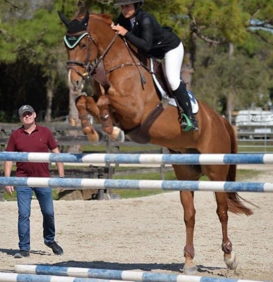 High Performance Showjumping Clinic's - Denis Flannelly